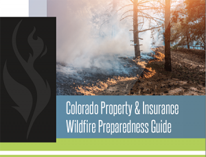 Download the Wildfire Brochure
