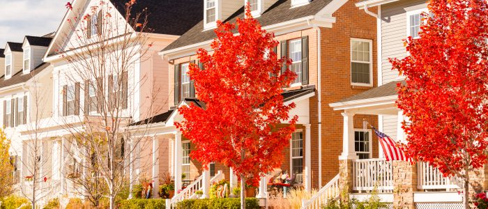 Homes close in proximity to one another with fall trees out front