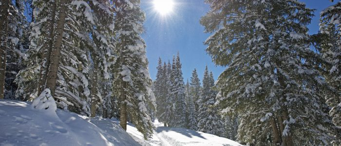 Winter Mountain Trail. Colorado Mountain Trail Under the Snow. Breckenridge Colorado Area. Beautiful Sunny and Cold February Day.