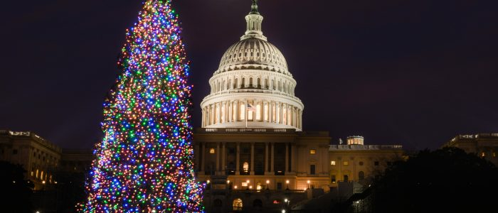 2020 National Christmas Tree Grand Mesa, Uncompahgre and Gunnison National Forests Selected to